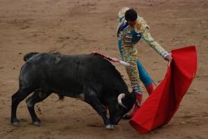 800px Madrid Bullfight1 300x201 Boğa Güreşi   İSPANYA Madrid