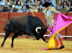 Bullfighting1 300x221 Boa Grei   SPANYA Madrid