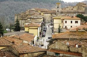 castellina_in_chianti_rooftops_rhett[1]
