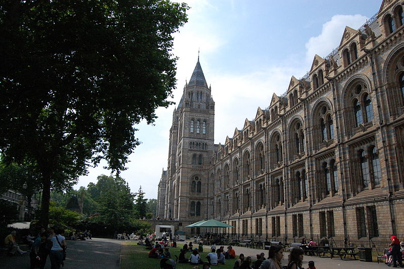 800px-Last_Minute_Trip_to_London_-_Natural_History_Museum[1]