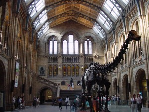 Natural-History-Museum-Attractions-in-London[1]
