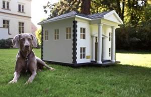 Ucuz Köpek Kulübesi