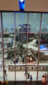 Mall of Emirates Ski Dubai